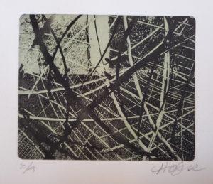 Gravure solaire - Martine Hogue
